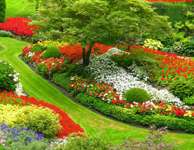 Festival of Flowers and gardening